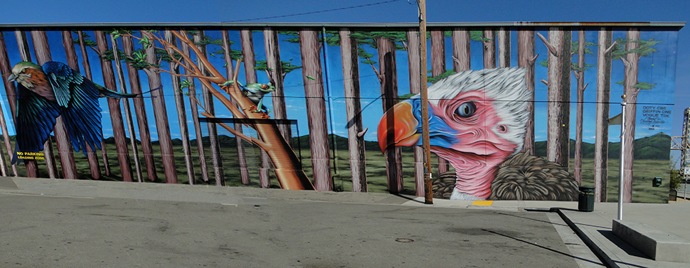 Photography by Street Art SF