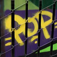 Pop Crew